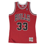 Scottie Pippen. Chicago Bulls. Swingman. Hardwood Classics.
